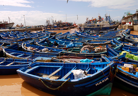 Essaouira Atlas photography Tours - blue boats and vast landscapes