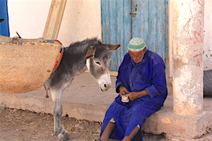 Day Tours from Essaouira with photography or cookery workshops